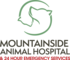 Mountainside logo